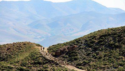 کوه بوز سینا - ارومیه