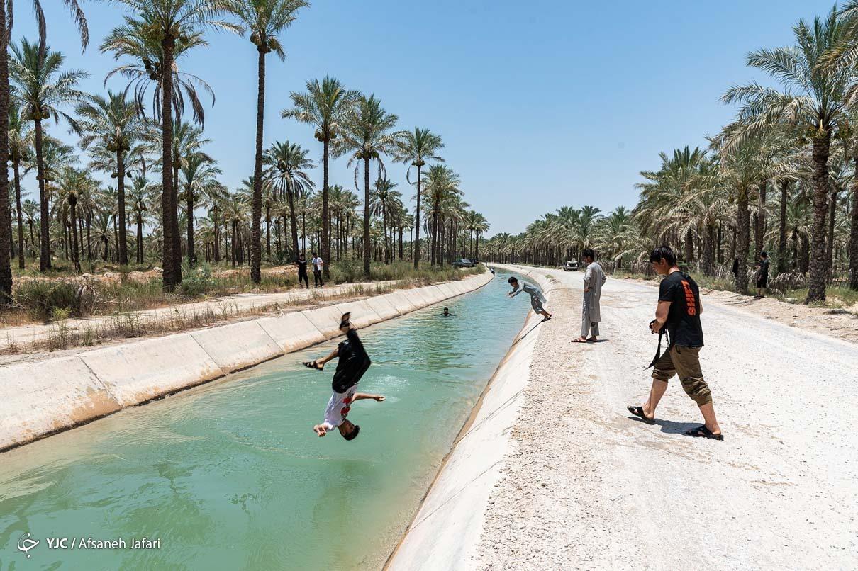 فرار از گرمای تابستان بوشهر