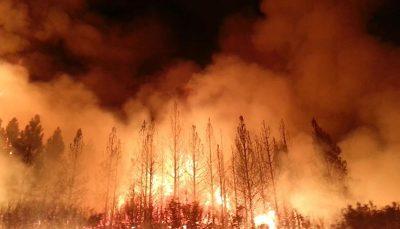 ادامه آتش سوزیهای گسترده در کانادا درپی گرمای شدید هوا