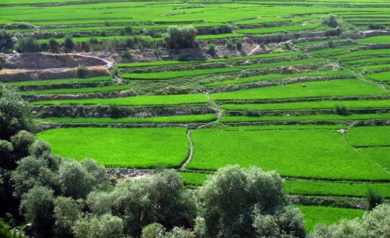 خوزستان چه بود؟ خوزستان چه شد؟ مروری بر اطلاعات دو مقاله علمیدهه 40 در مورد خوزستان