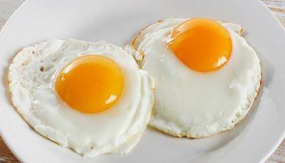 تخم مرغ باز هم گران می شود