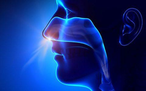 تولید واکسن مننژیت در قالب قطره بینی