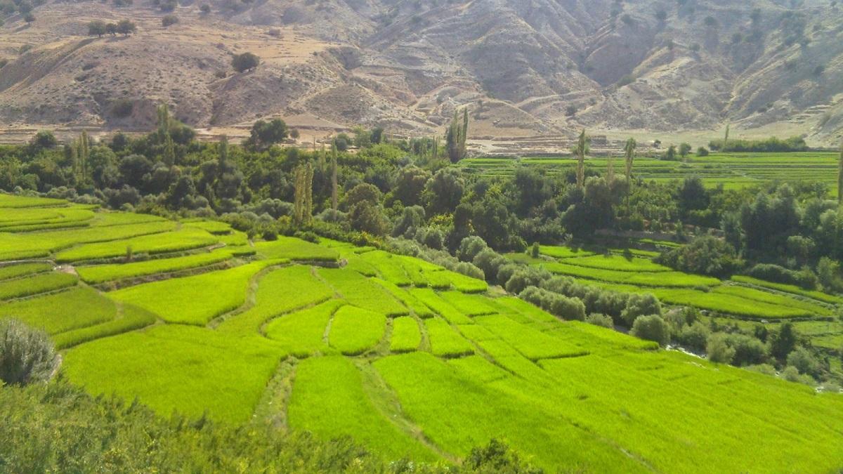 طبیعت خوزستان