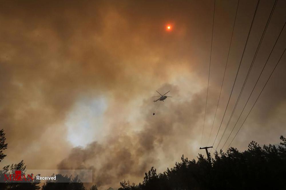 آتش در سواحل ترکیه