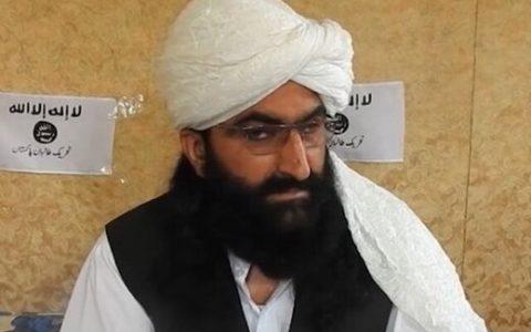 نور والی محسود: طالبان پاکستان در کنار طالبان افغانستان میجنگند