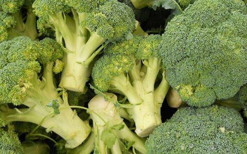 غذاهایی که کلسیم مورد نیاز بدن را تامین میکنند