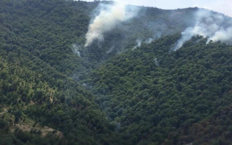 آتش سوزی در نزدیکی مرز جمهوری اسلامی ایران