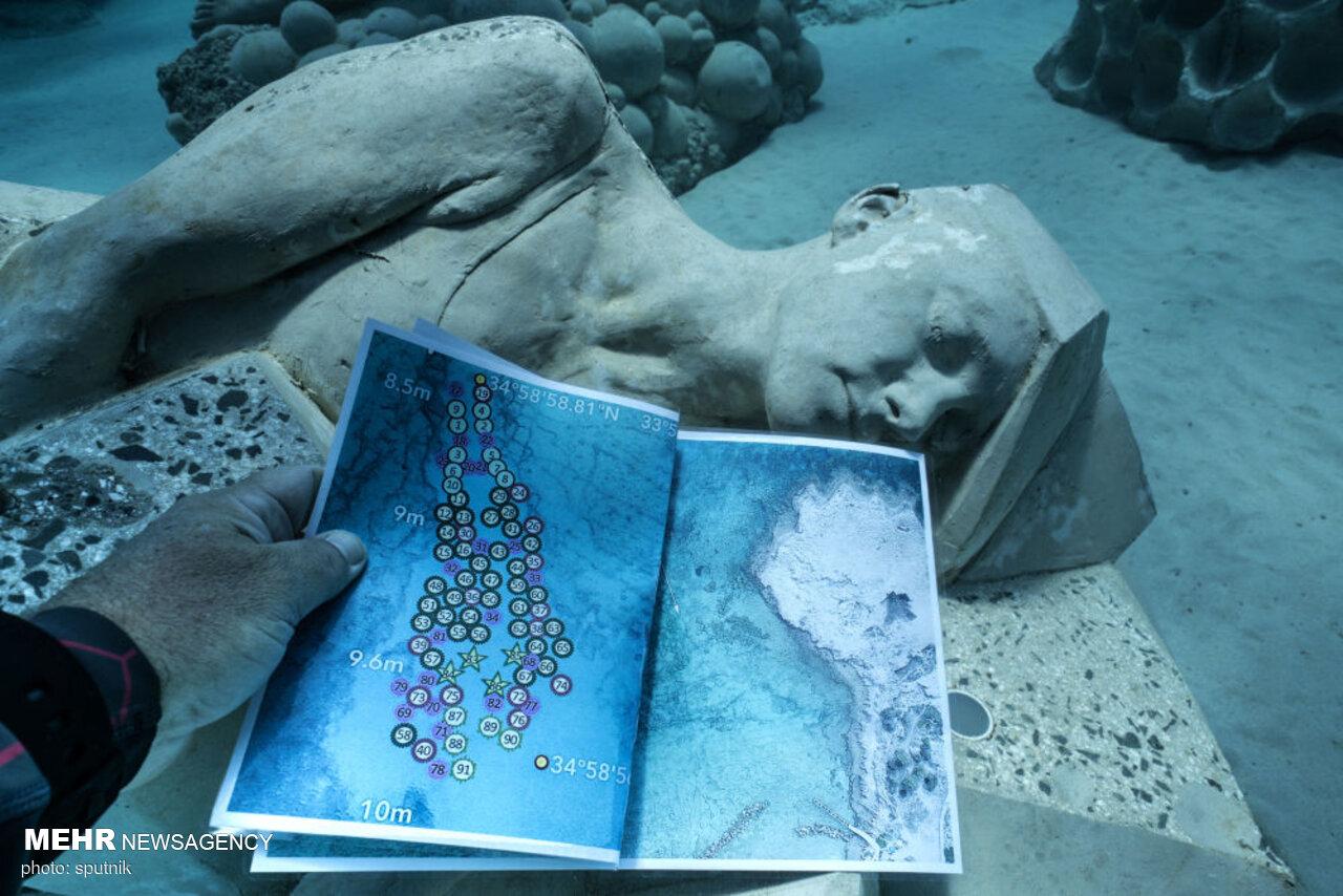 جنگلی شگفتانگیز زیر آب در قبرس