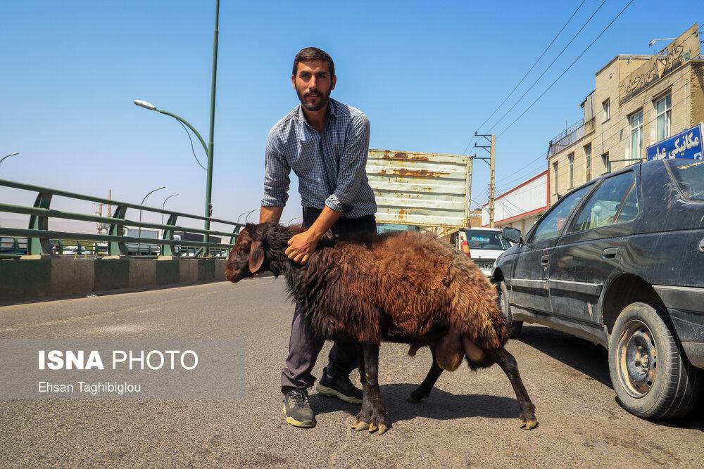 حسینیه اعظم زنجان، دومین قربانگاه بزرگ جهان اسلام/ تصاویر