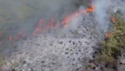 آتشسوزی ۱۲ ساعته در ۳ نقطه میانکاله