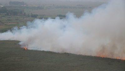 آتش بخش عراقی تالاب هورالعظیم را فراگرفت