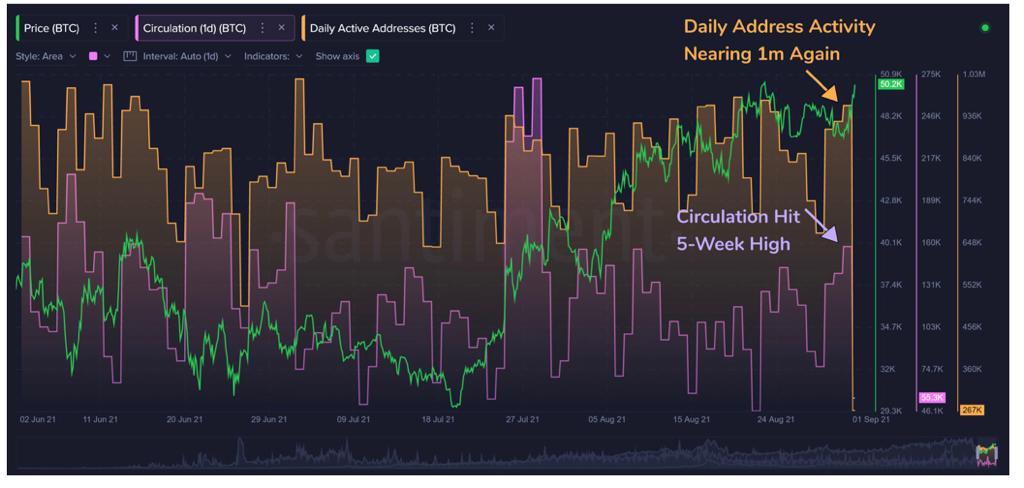 افزایش فعالیت نهنگها همزمان با عبور قیمت بیت کوین از ۵۰ هزار دلار