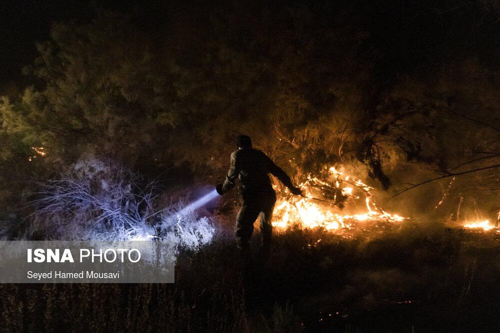 آتش سوزی در جنگلهای کرخه و سایت گوزن زرد ایرانی