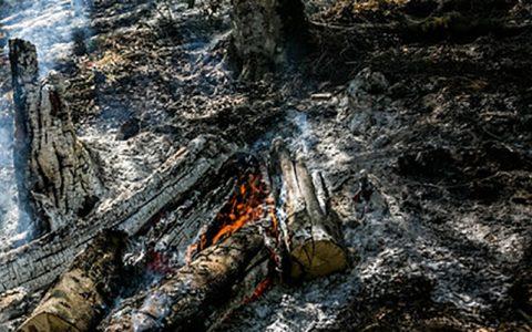 اطفای آتش در پارک ملی خجیر
