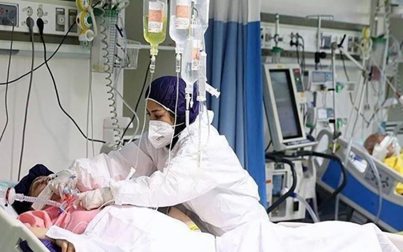 مرگ ۲۷۶ بیمار بر اثر ابتلا به کووید۱۹